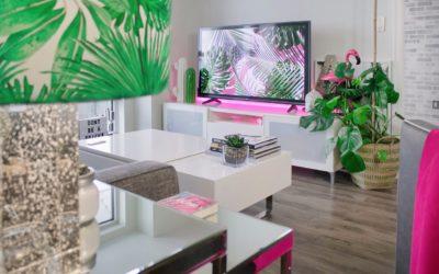 apartment books cactus 1046639 400x250